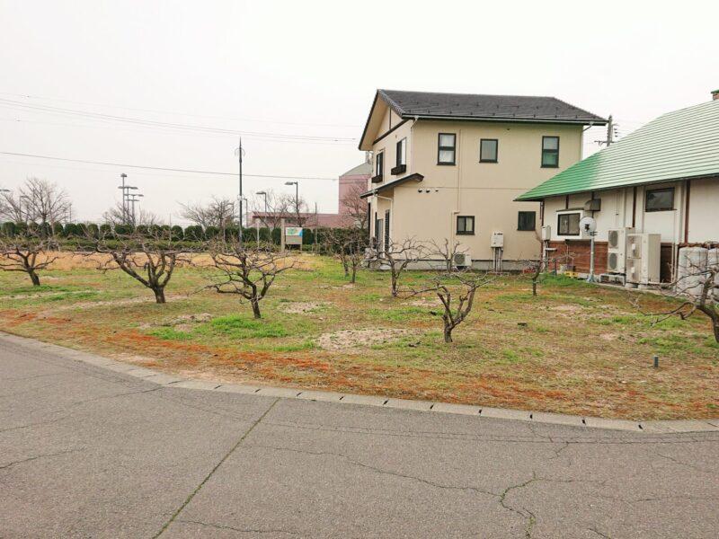 新潟市西区みずき野4丁目413番12・413番13